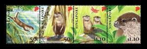 Oriental Small Clawed Otters (latest)