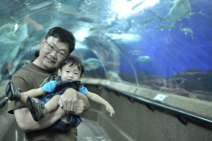 Caleb in his favourite portable highchair (ie Papa) surrounded by the wonders of Underwater World (2nd birthday outing)