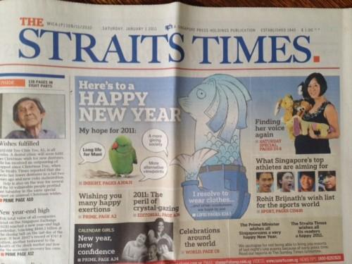 Straits Times 1 Jan 2011 feature blurb
