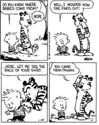 Calvin & Hobbs comics